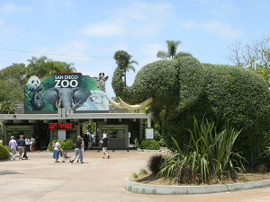 Top Unique Zoo Trips of the World