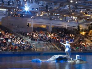 The World's Most Spectacular Aquarium Holidays