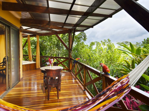 Costa Rica's Chachagua Rain Forest Hotel Offers Visitors a Host of Adventures