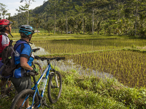 Tourists Travelling by Bike Get Up Close to Bali's Attractions