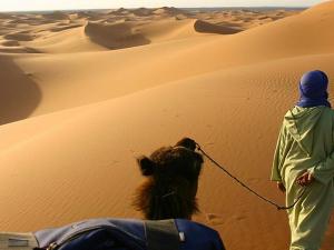 Top 10 Travel Agent & Tour Operator Blogs