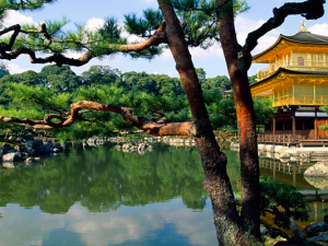 Japan: 5 Essential Experiences to Have in Kyoto