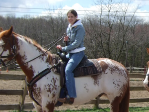 5 horse riding holiday ideas for beginners