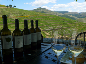 Top 5 'Off the Beaten Track' Wine Tours Around the World