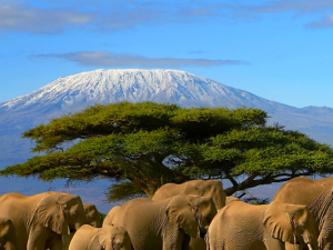 Ten reasons to visit Africa's East coast this Winter