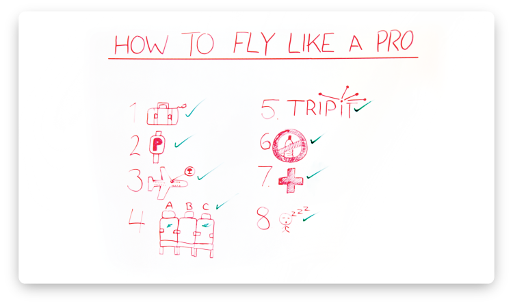 how-to-fly-like-a-pro